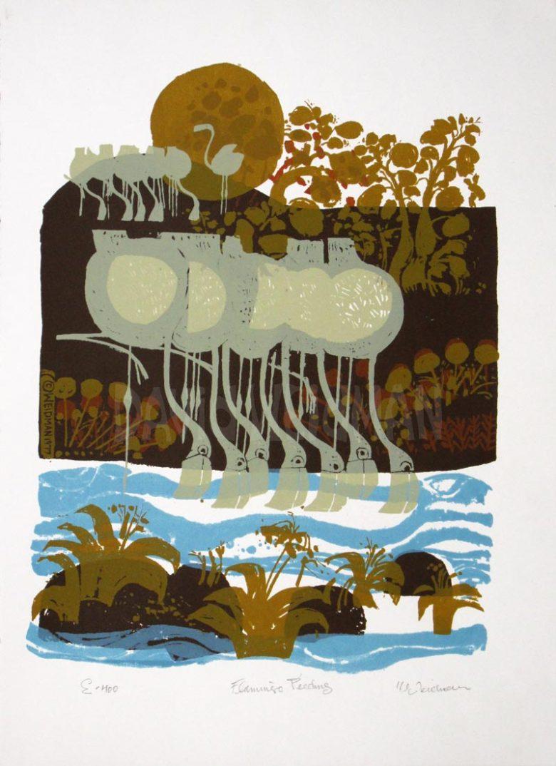 Image of Flamingos Feeding (Rag Paper) - David Weidman – DW00053