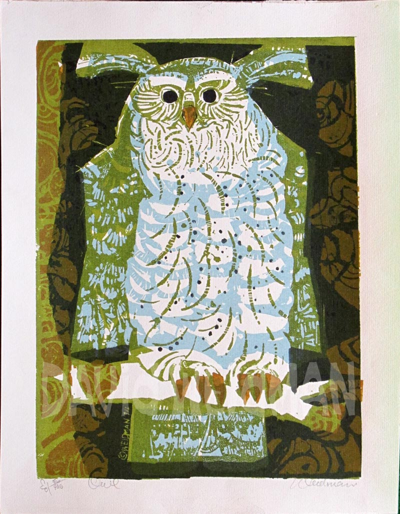 Image of Owl (Blue) - DW00167