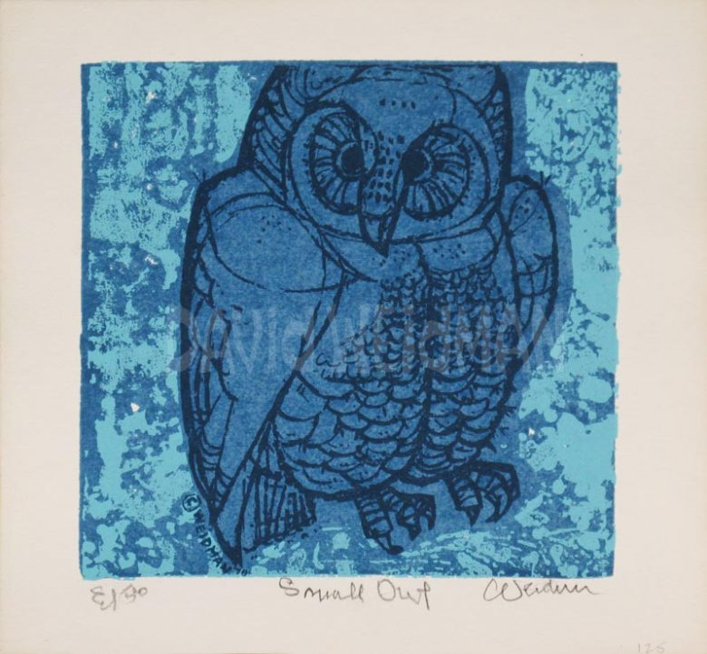 Image of Small Owl (Blue) - David Weidman - DW00202