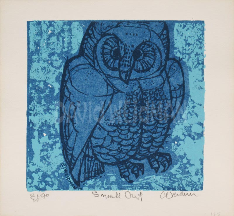 Image of Small Owl (Blue) - David Weidman - DW00202